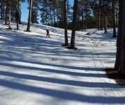 Cross skiing in Latvia