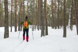 Cross skiing in Latvia