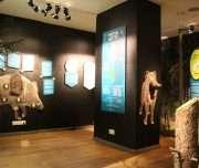 Sagadi museum